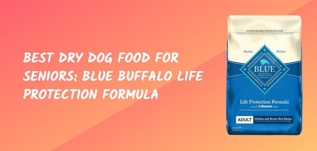 BEST DRY DOG FOOD FOR SENIORS BLUE BUFFALO LIFE PROTECTION FORMULA