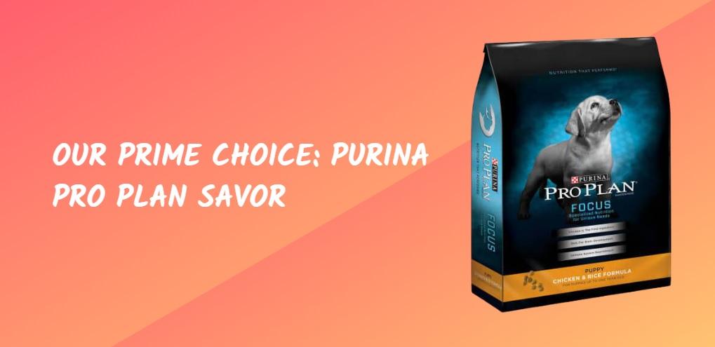 Our Prime Choice Purina Pro Plan Savor
